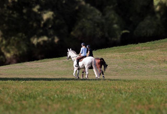 ride på heste