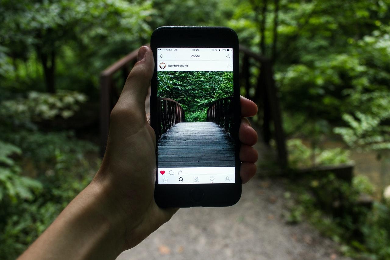 Person tager billeder af skoven