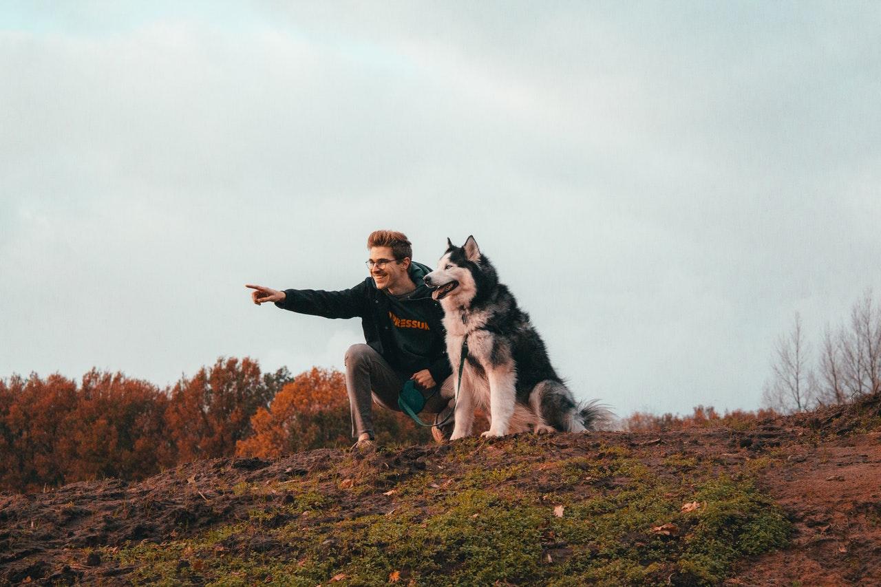 Mand går tur med hund udenfor